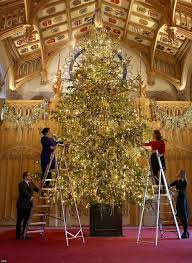 has 20ft tree erected at castle daily