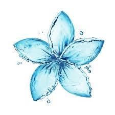 flower made of water splash graphic design at it u0027s best