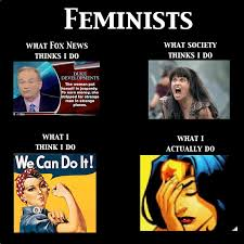 What We Think We Do Meme - what people think feminists vegans do and what we actually do