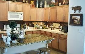 modern kitchen themes kitchen popular kitchen themes beautiful kitchen decor ideas
