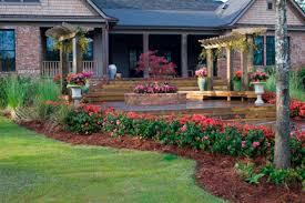 encore azalea the world u0027s best selling multi season blooming azalea