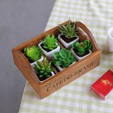 garden planter wooden pot for succulent flower plants window box