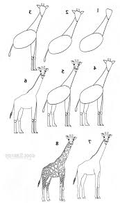wild animals drawing easy drawing of sketch