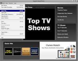 file format quicktime player export quicktime mov files using quicktime 7 pro player for stock