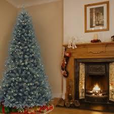 tree blue spruce wayfair