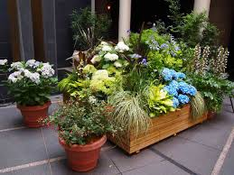 Backyard Plant Ideas Small Backyard Garden And Patio House With Stone Floor Tiles And