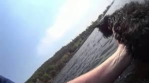 affenpinscher photos water affie 10 year old affenpinscher swimming in lake
