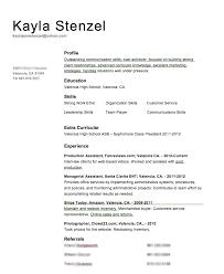 Volunteer Sample Resume by Volunteer Resume Template