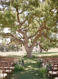 wedding arches made from trees best 25 wedding trees ideas on hochzeit wedding