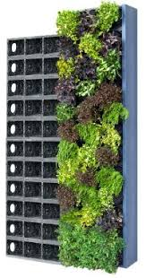 gro wall vertical gardening system rainharvest systems online