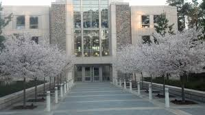 Sample Essay For Mba Admission Sample Mba Essays From The Top Business Schools