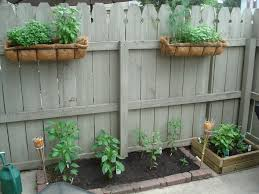 fashionable design apartment garden ideas balcony vegetable herb