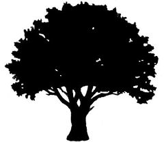 25 unique tree outline ideas on simple tree outline