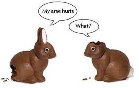 easter chocolate bunny the unfortunate chocolate bunnies