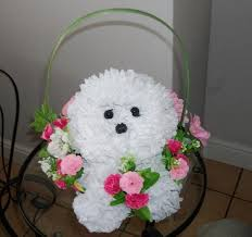 Dog Flower Arrangement Shirley Jordan On Twitter