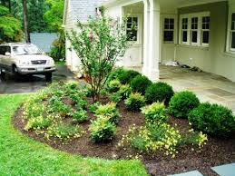 Plants For Front Yard Landscaping - front yard desert landscaping landscaping yards notched pool green