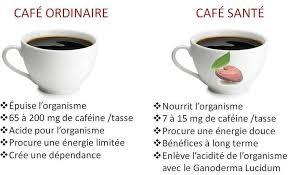 Top Mes coups de coeur (Café et thé biologiques) #YN79