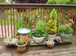 Deck Garden Ideas Small Deck Garden Ideas Photograph Deck Garden