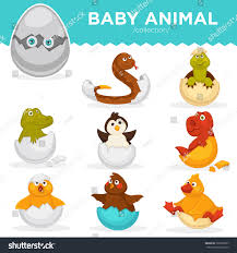 baby animals hatch eggs cartoon pets stock vector 729978607