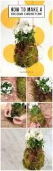 11 best diy jardin images on pinterest gardening workshop and