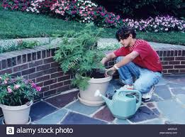 native plants maryland native american teen watering plants helpful teen home life