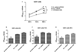 β‑catenin knockdown inhibits the proliferation of human glioma