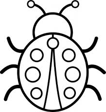 bug coloring page printable pictures 2440