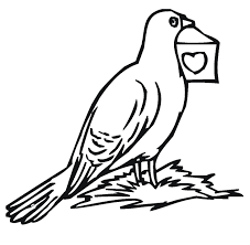 Pigeon Clipart Colouring Page Pencil And In Color Pigeon Clipart Mo Willems Coloring Pages