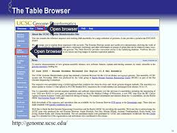 ucsc genome browser tutorial ppt download