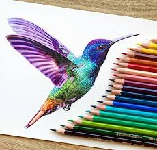 best 25 colored pencil drawings ideas on pinterest color pencil