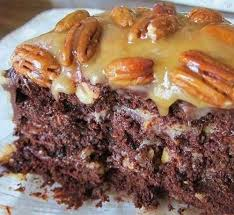best 25 chocolate turtle cakes ideas on pinterest brands of