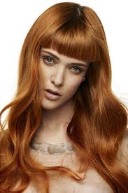 snap hair pumpkin spice gingersnap hair color in ta monaco salon