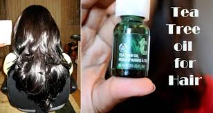 essential oils for hair growth and thickness 5 ways to use tea tree oil for hair