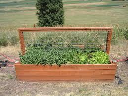 box garden ideas garden design ideas