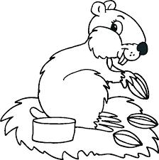 coloring pages animals hibernating hibernating animals coloring pages wetland animals labeled smiling
