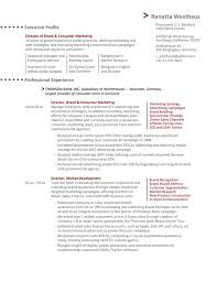 Resume Samples For Marketing Professionals by The Director Of Marketing Resume Example Essaymafia Com