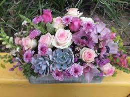 succulent arrangements succulent arrangement lia s floral designs