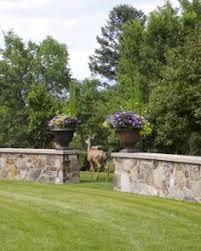 shrubs native to colorado are especially beneficial for your