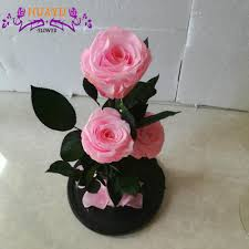 wholesale eternal luxury roses in glass dome tubes real