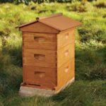 Backyard Beehive Beekeeping All Abuzz About Modern Urban Beehives Bees Media Magazine