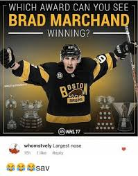 Bruins Memes - 25 best memes about bruins fan bruins fan memes