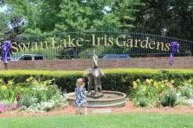Botanical Gardens South Carolina Mcr S Thoughts Swan Lake Iris Garden Sumter South Carolina