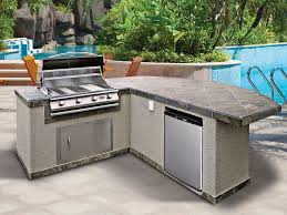 Cabinets For Outdoor Kitchen Interior Design Surprising Prefab Cabinets With Tiles Countertop