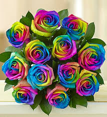 tie dye roses kaleidoscope roses 12 stems bouquet only flowers plants and gifts