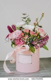 flowers in a box flower box stock images royalty free images vectors