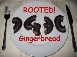 z4root apk gingerbread gingerbreak apk to root android 2 3 gingerbread version
