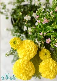 Salad With Edible Flowers - the prettiest easiest spring easter salad with edible flowers