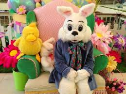 easter bunny now available for photos at southdale center edina