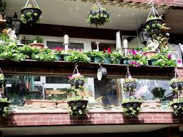 pictures small balcony garden design best image libraries