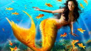 real mermaid wallpaper 52dazhew gallery